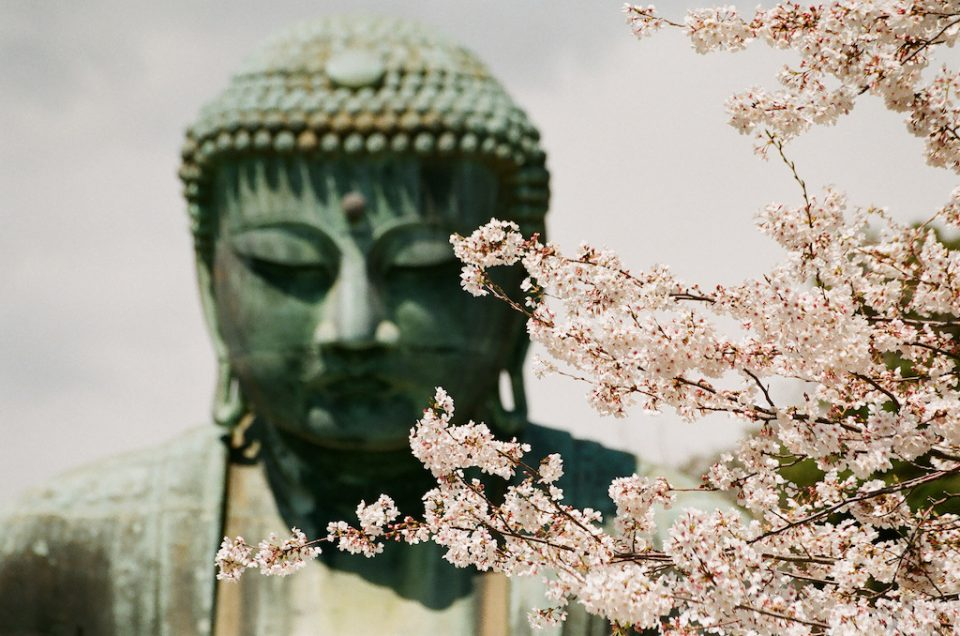 The nostril of the Buddha