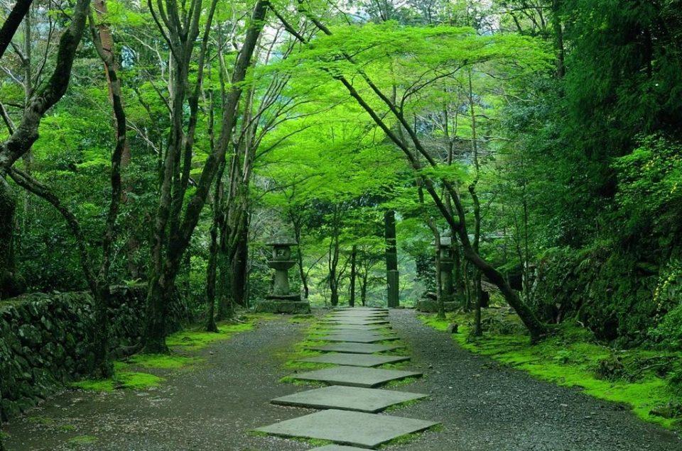 Kyoto love stones