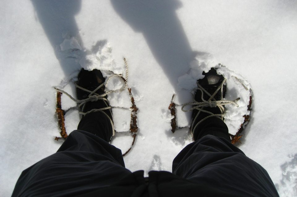 snow rackets
